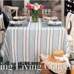 Boutique Lexington Compagny spring